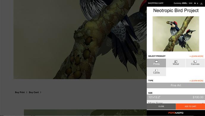 Screenshot 2020-07-12 at 15.16.07